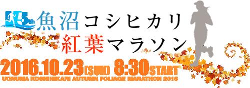 魚沼コシヒカリ 紅葉マラソン 公式ウェブサイト
