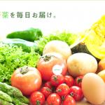 株式会社双葉屋,札幌中央卸売市場,道産野菜,北海道,野菜,青果,根物,じゃがいも,たまねぎ,にんじん,かぼちゃ,ネギ